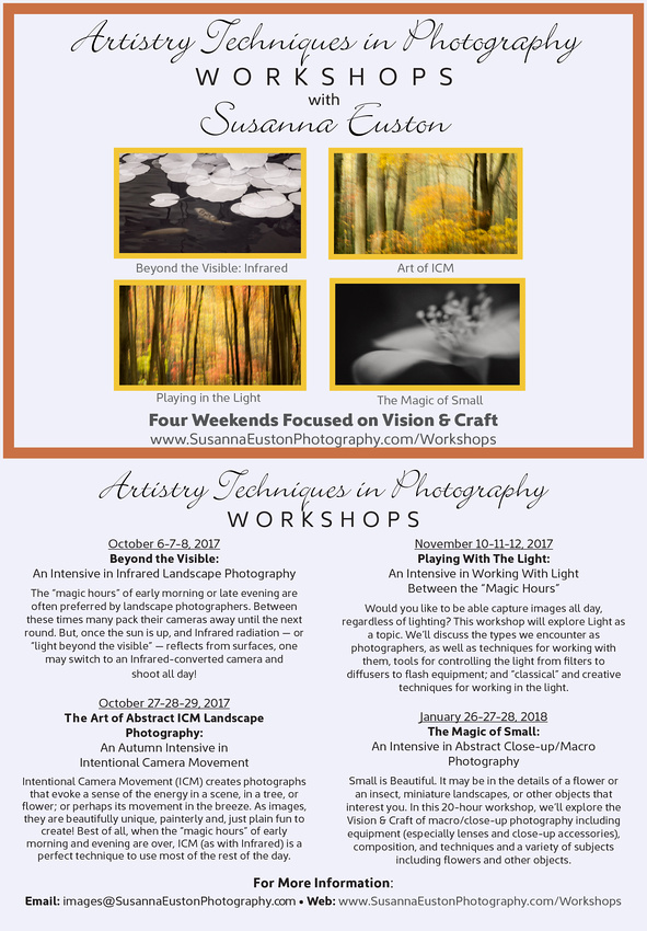 Susanna Workshop
